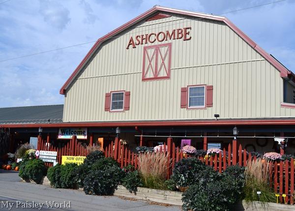 Ashcombe2