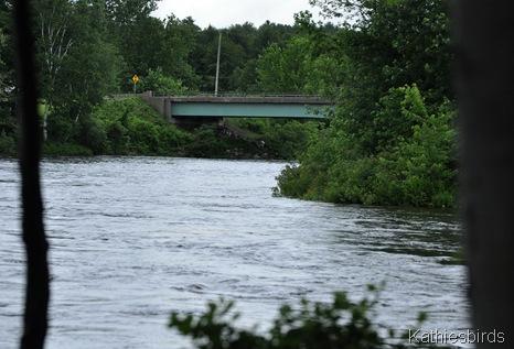 7. the river-kab
