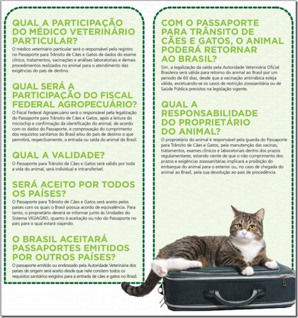 passaporte-cao-e-gato-4