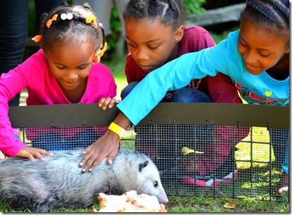 Global Campus zoo picnic