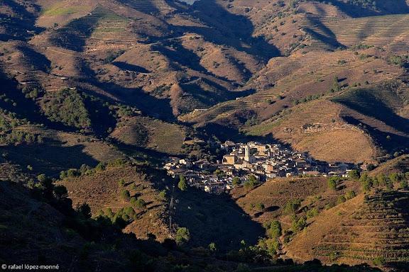 Porrera i la vall del Cortiella des del coll Major, al fons el MontsantDOQ Priorat,Falset / Porrera, Priorat, Tarragona