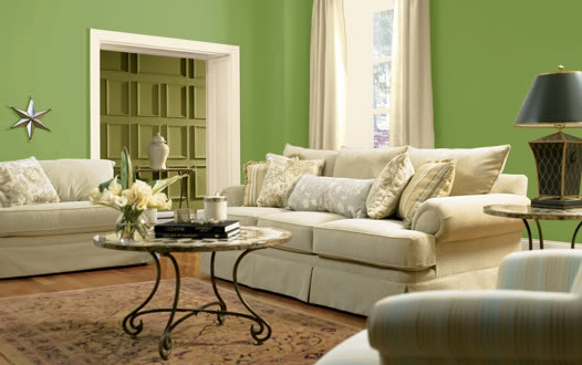 braun grünes wohnzimmer:Green Color Paint Living Room Ideas