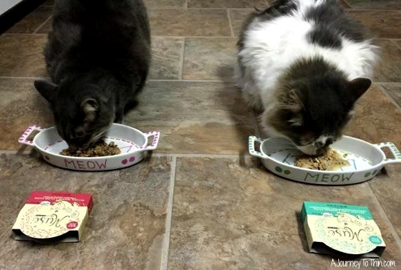 Dudley devoured the Natural Tuna and Seabass Recipe and Daisy enjoyed the Natural Herring and Salmon Recipe