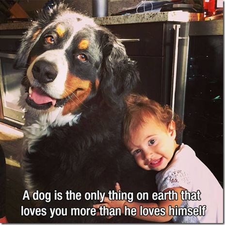 dogs-love-friend-001