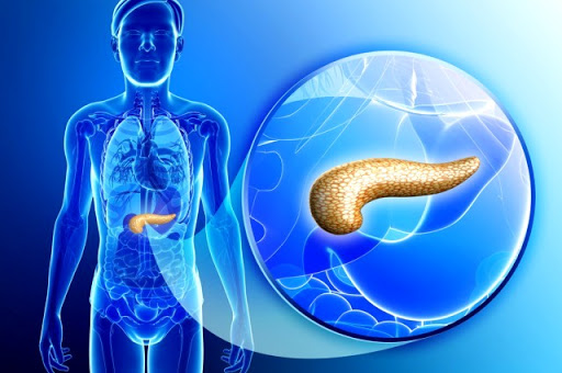 Artificial Pancreas Trials To Begin In The U.S.