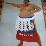 yokozuna - highest class of sumo in Tokyo, Tokyo, Japan