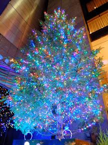 銀座ミキモトのジャンボクリスマスツリー2013