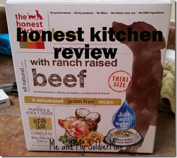 Me And My Soldierman Review The Honest Kitchen Dog Food
