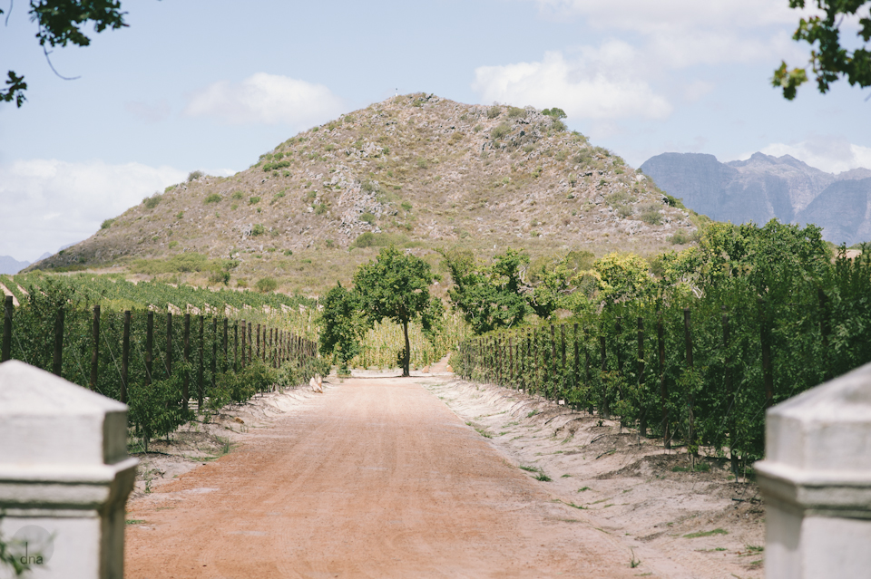 Paige and Ty wedding Babylonstoren South Africa shot by dna photographers 08.jpg