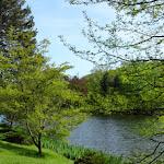 Domaine de Courson : étang