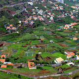 Farms and Homes of Camara de Lobos - Funchal, Madeira