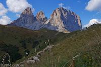 Kurz vor dem Scheitel des Sellajoch (2244m) mit Blick auf die Langkofelgruppe (Sassolungo). Rechts der Langkofel als Hauptgipfel, in der Mitte die Grohmannspitze, links der Plattkofel.