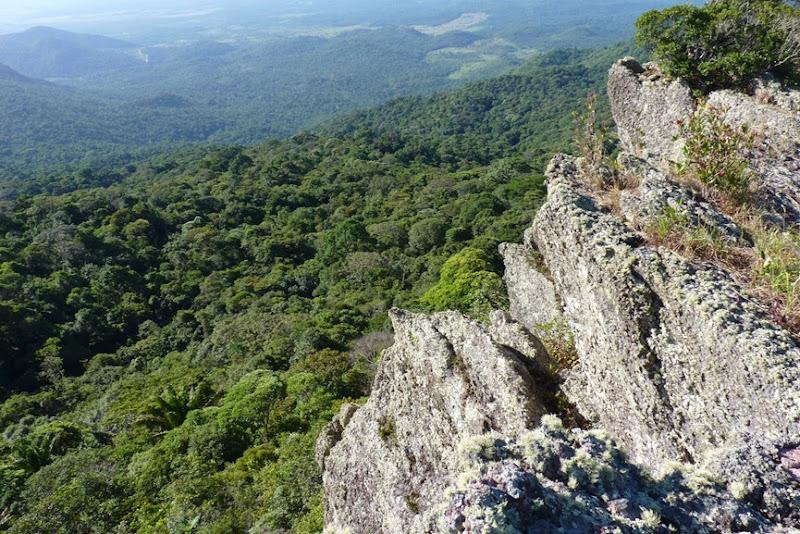 Serra do Tepequém - Amajari, Roraima, foto: Lugares da Terra