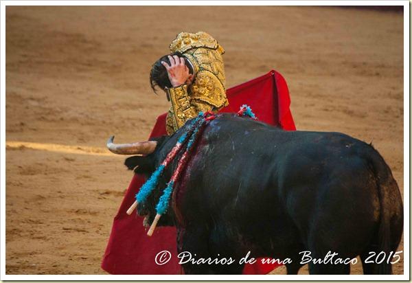 Toros Feria 2015-0012