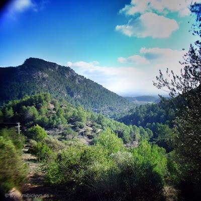 vistas de Palma