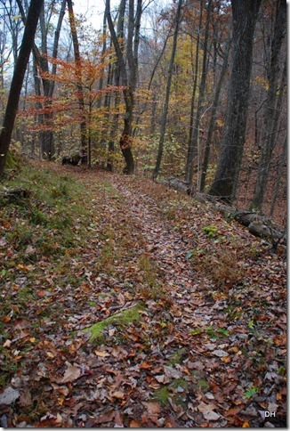 10-31-15 Cumberland Gap Saddle Hike (138)