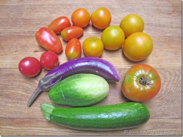 eggplantandtoms