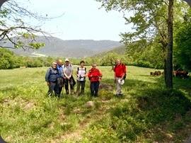 8 Camps del Puig