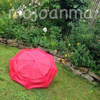 Regenschirm, Sommer, garten