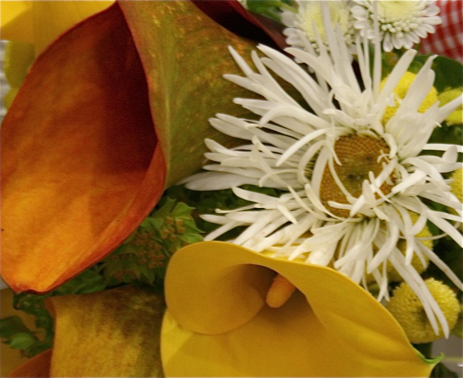 orange and yellow lily wedding