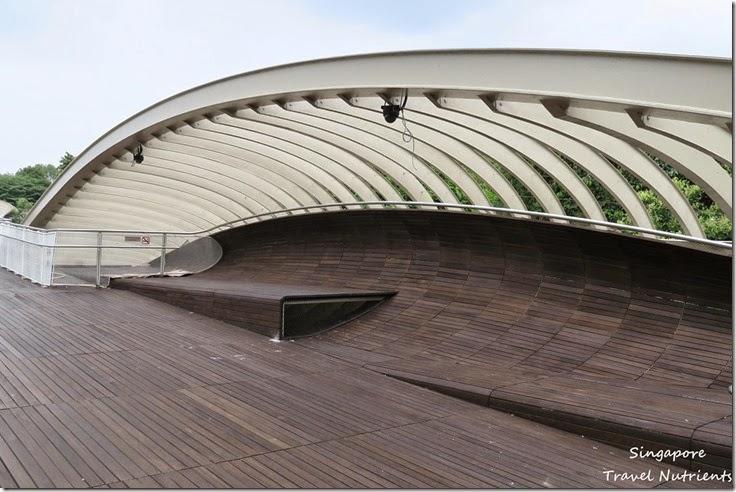 新加坡花柏山 (40)