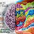 Mozek je vlastně docela boží aneb pět zajímavostí o centrální nervovésoustavě