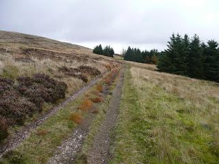 Track below Crag Fell