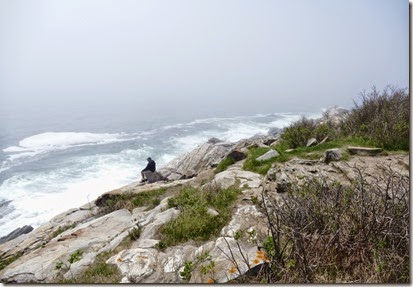 Freeport_ME_pemaquid_point_4
