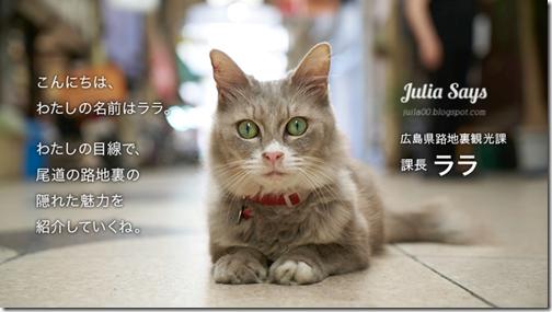 catstreetview (3)