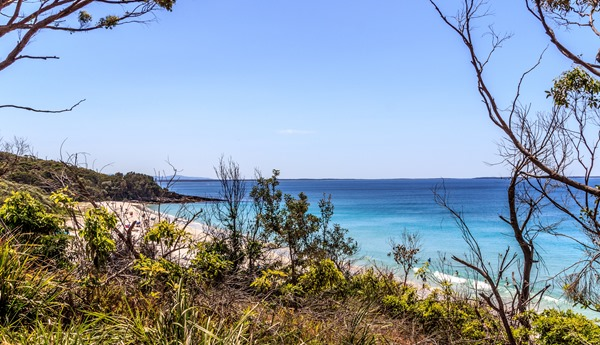 Wishful Thinking - Jervis Bay