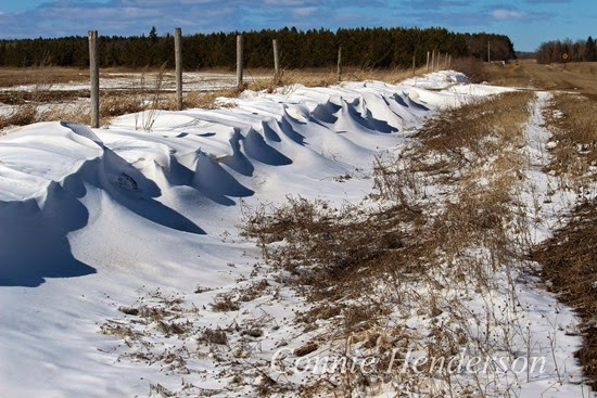 Snow Drifts March 26