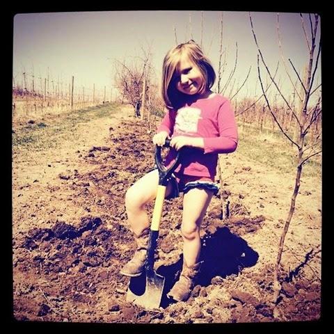 planting pip 2