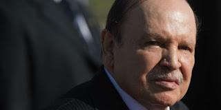 Bouteflika, Rebrab : Genèse d'un conflit d'intérêts