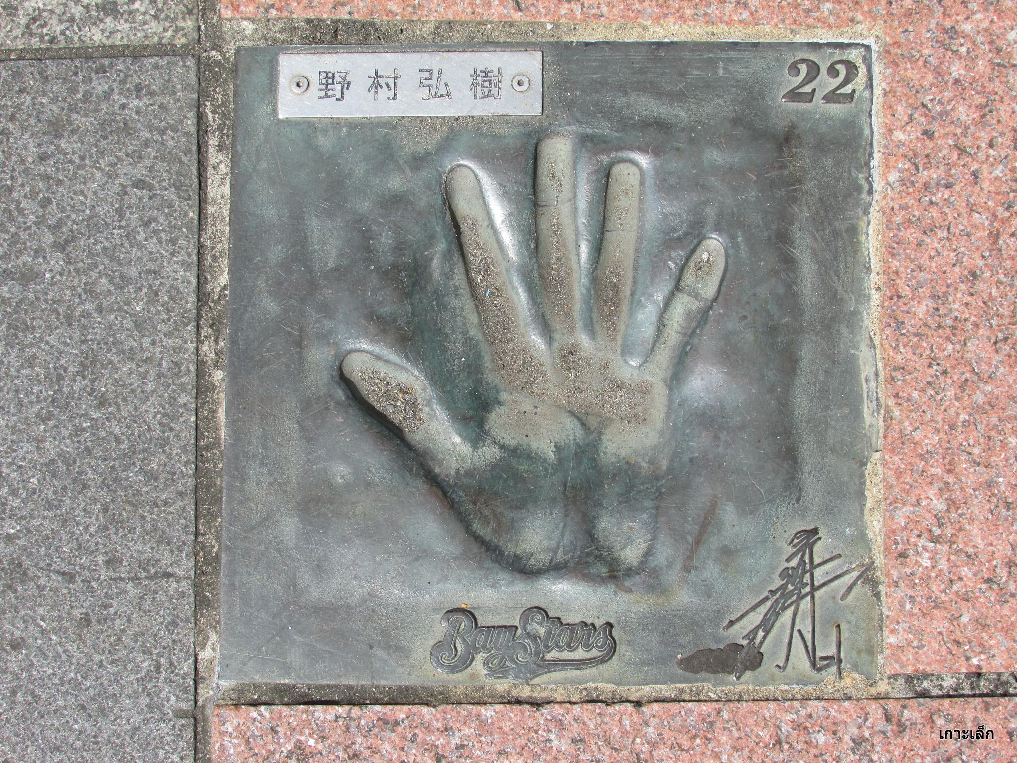 野村弘樹の画像 p1_14