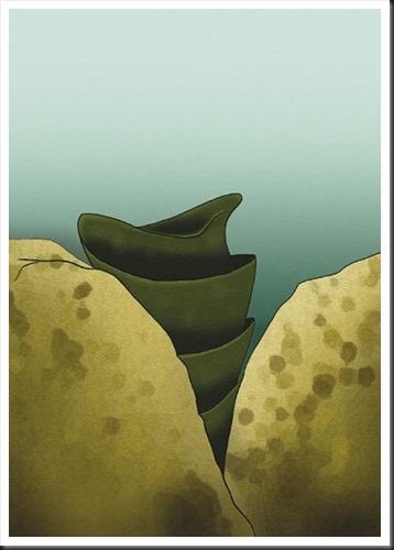 Heterodontus portusjacksoni
