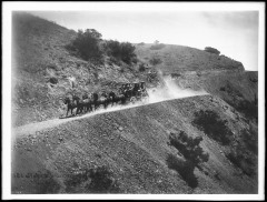 Stagecoach_on_road_on_Catalina_Island,_ca.1903-1905_(CHS-1697)