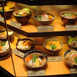 delicious Japanese dishes in a store window in Shinjuku, Tokyo, Japan