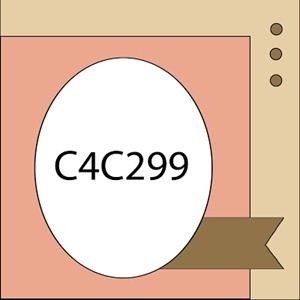 C4C299Sketch