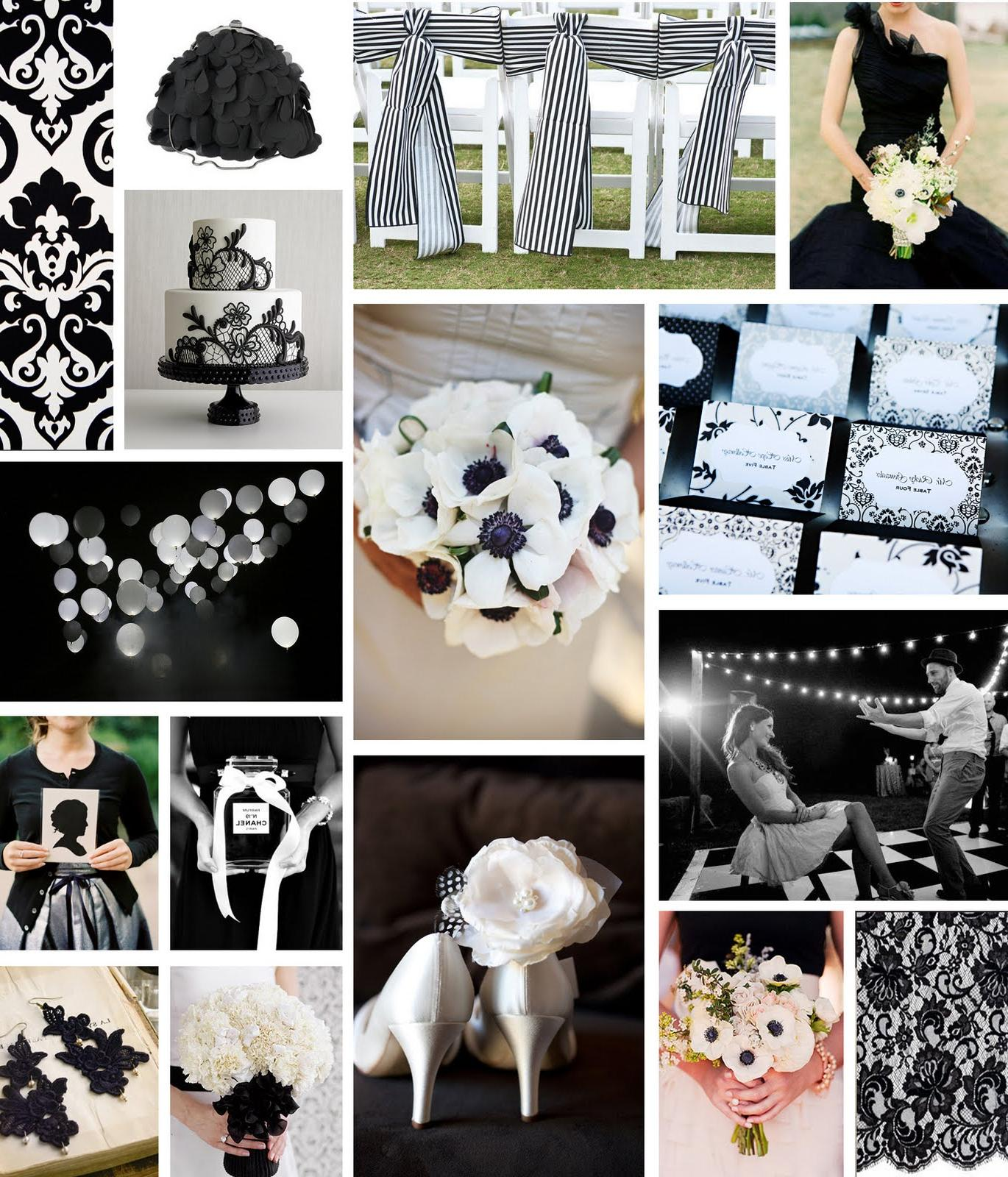 black & white by blossom sweet