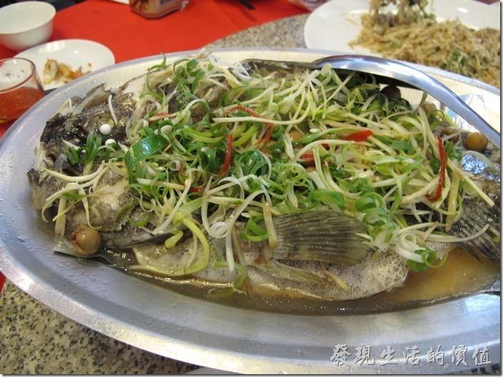 台南-阿美飯店。蔥油石斑。感覺上破朴子少了一點點,因為幾乎已經吃飽了,雖然石斑的肉質不錯,但這隻魚還有四分之一沒吃完。
