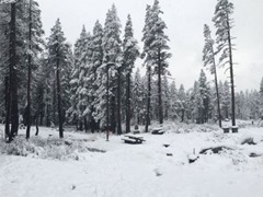 Near Donner Summit, abc10.com