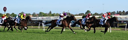 caulfield cup_finish 1