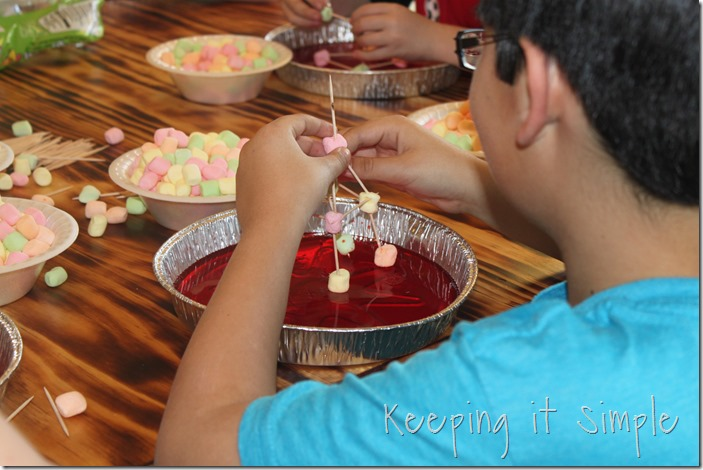boy-birthday-party-idea-natural-disaster-party (21)