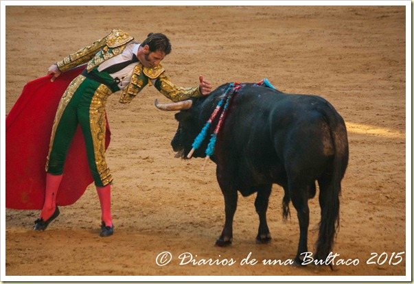 Toros Feria 2015-0005
