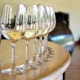 Wine Tasting by Austin Speaker - Food & Drink Alcohol & Drinks ( wine, chile, vineyard, stemware, tasting, glassware, white wine, santiago, winery )