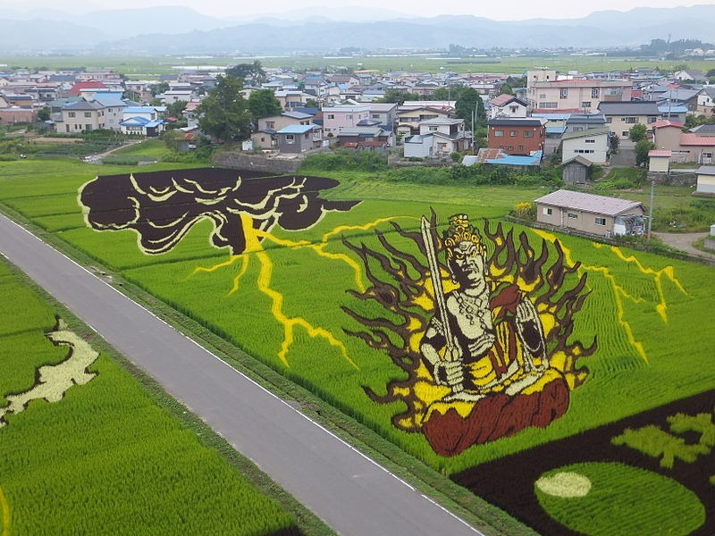 japanese-rice-paddy-art-7