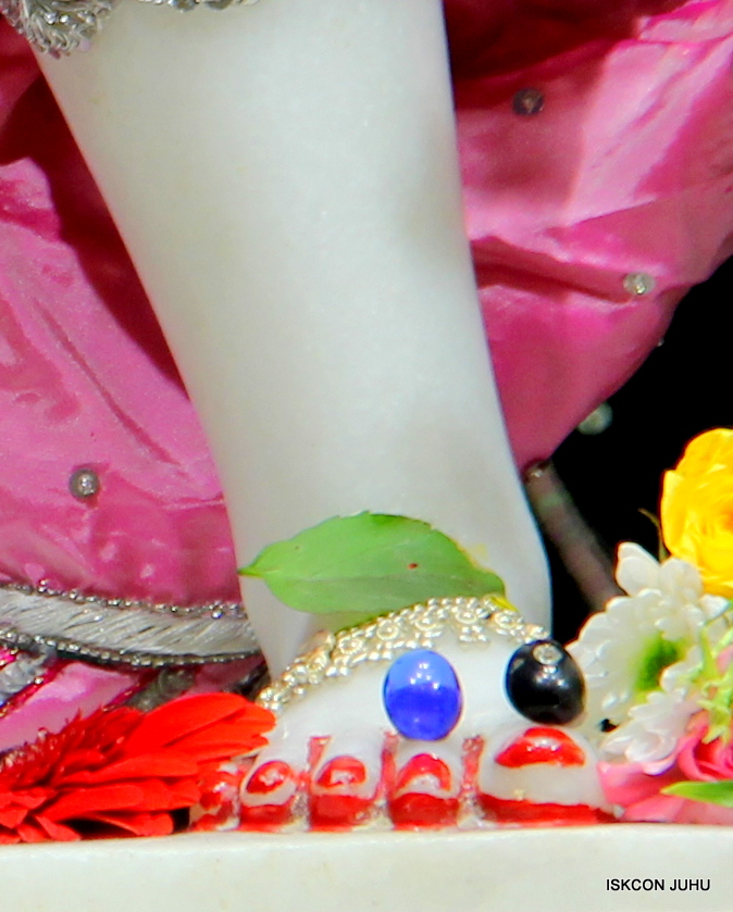 ISKCON Juhu Sringar Deity Darshan 20 Jan 16 (23)