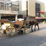 A horse & carriage in Memphis TN 07212012
