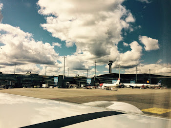 Bilde fra flyet mot Gardermoen.