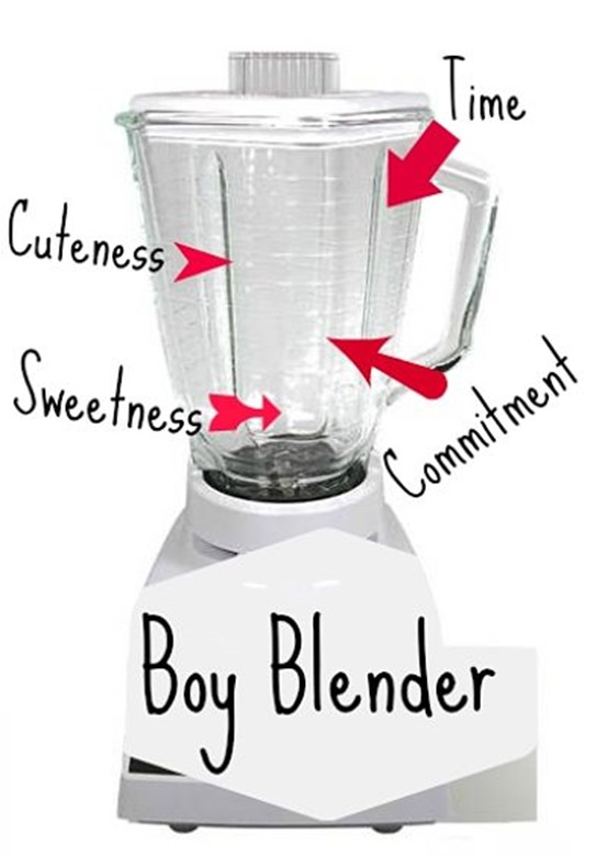 Oster Blender from Lazada